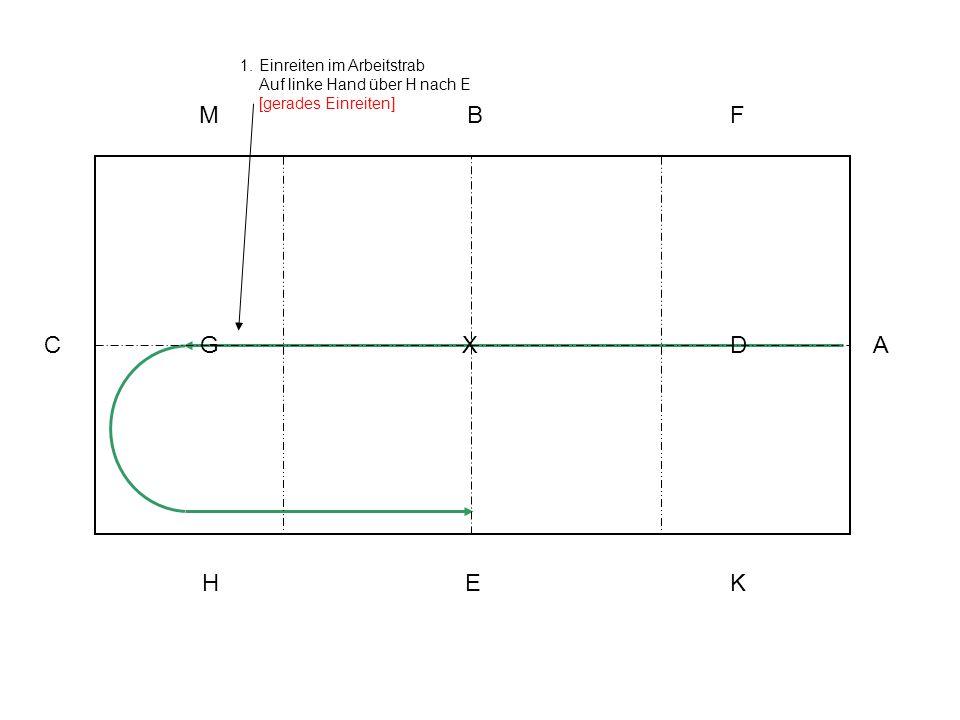 Einreiten im Arbeitstrab Auf linke Hand über H nach E [gerades Einreiten]
